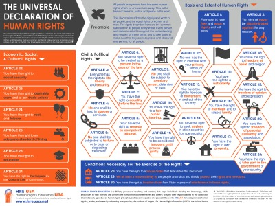 UDHR Poster Honeycomb